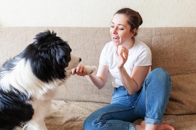 Mulher atrativa nova de sorriso que joga com border collie bonito do cão de filhote de cachorro no sofá em casa dentro de casa