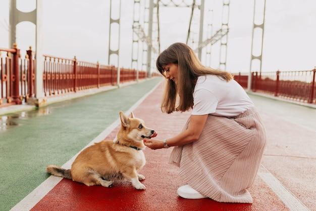 Mulher bonita e elegante usando saia e camiseta branca brincando com cachorro corgi na ponte ensolarada
