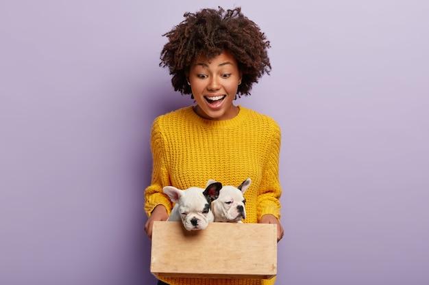 Mulher bonita e feliz segurando uma caixa de madeira com dois cachorrinhos fofos de linhagem