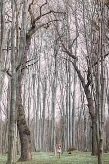 Mulher bonita em branco andando pela floresta verde na primavera