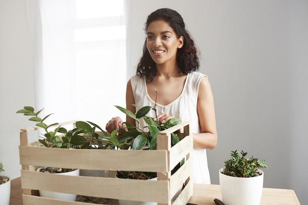 Mulher bonita que sorri cuidando das plantas na caixa na parede branca do local de trabalho.