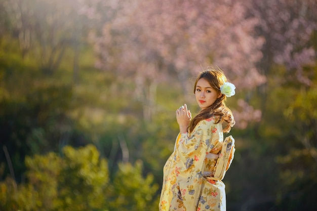 Mulher bonita wareing japão treaditional, primavera sakura sakura blossom, flores de sukura flor rosa, estilo vintage