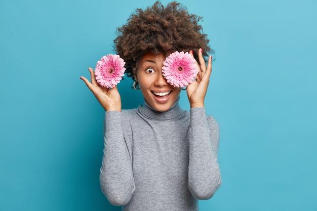 Mulher brincalhona e positiva com cabelo encaracolado segura duas gerberas rosa sobre os olhos, sorri e usa uma blusa casual cinza de gola alta isolada sobre a parede azul