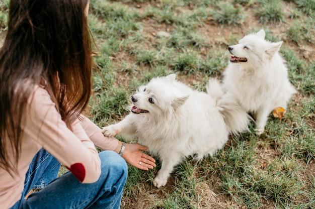 Mulher brincando com cachorros fofos