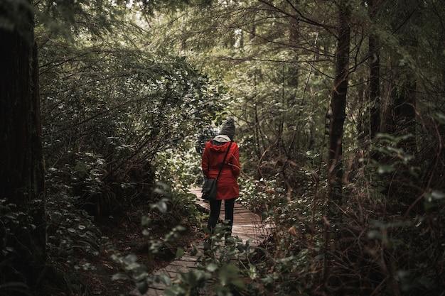 Mulher caminhando na floresta