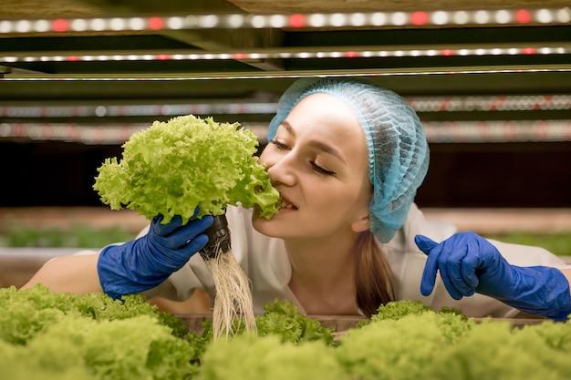 Mulher caucasiana comenta sobre o cultivo de salada orgânica na fazenda de hidroponia. conceito de cultivo de vegetais orgânicos e alimentos saudáveis.