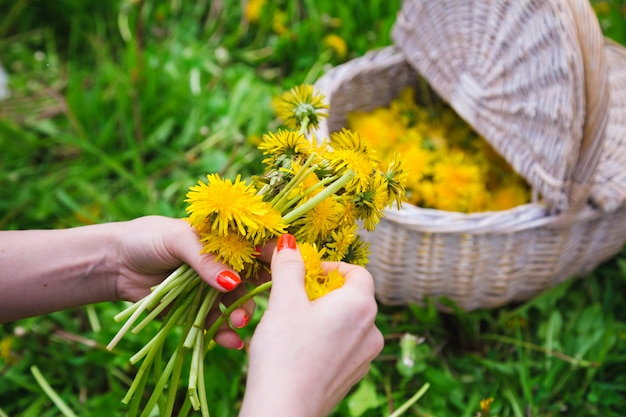 Mulher, colheita, amarelo, flores