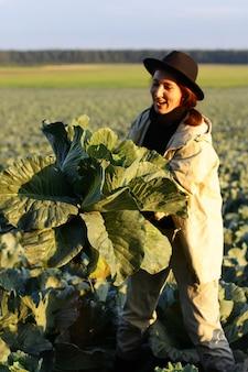 Mulher colhendo repolho vegetal no campo. agricultora trabalhando na fazenda orgânica. colheita na temporada de outono.