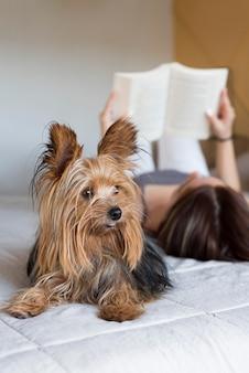 Mulher com cachorro ao lado da leitura