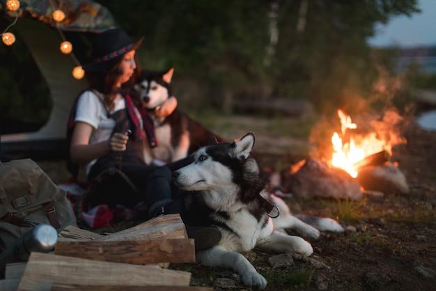 Mulher, com, cachorros, ligado, natureza