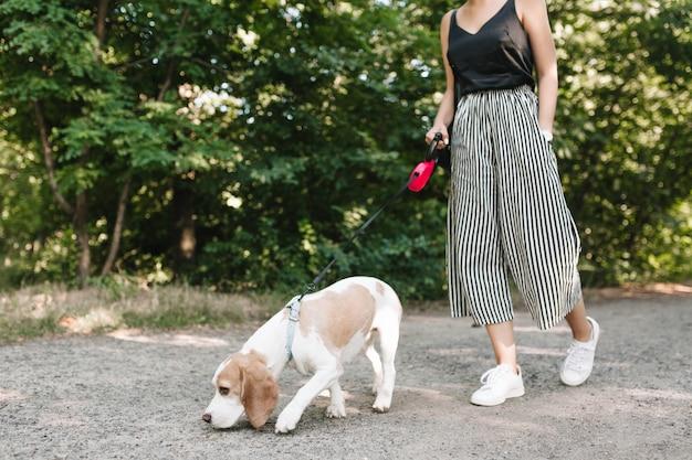 Mulher com calças listradas vintage caminhando no parque enquanto seu animal de estimação segue a trilha