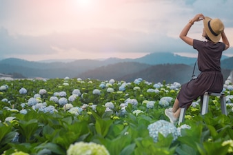 Mulher com campo de flores da hortênsia nos povos com paisagem e conceito de viagem.