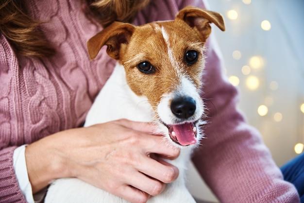 Mulher com cão de estimação relaxante. conceito de cuidados para animais de estimação
