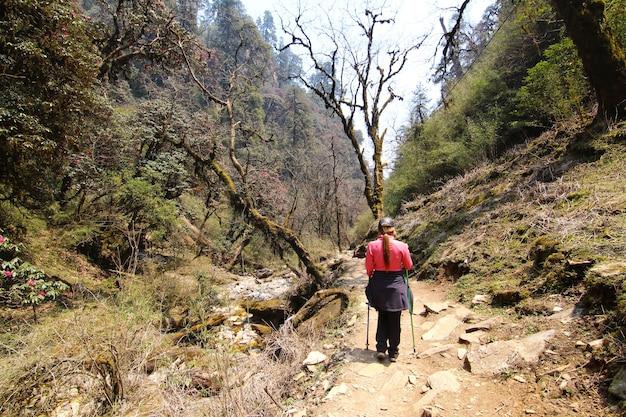 Mulher com equipamento de caminhada andando na floresta da montanha