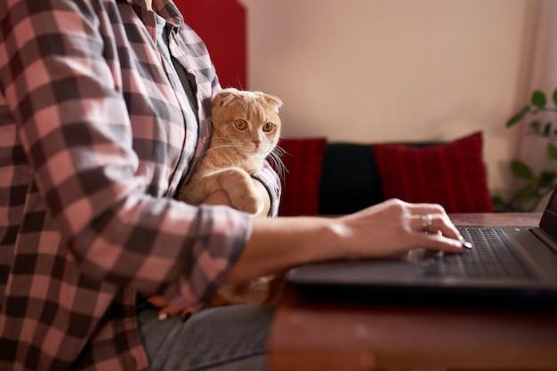 Mulher com estilo confortável está comprando com cartão de crédito em um laptop preto segurando um gato
