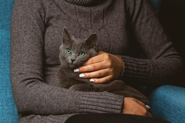 Mulher com gato cinzento doméstico nas mãos