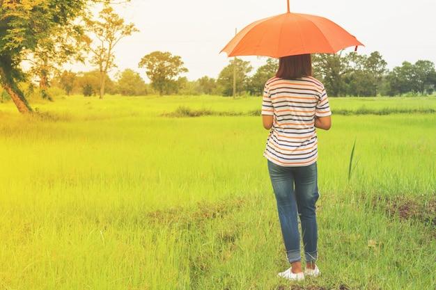 Mulher com guarda-chuva azul e campos verdes do arroz.