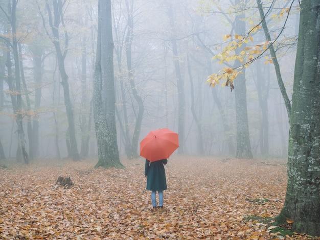 Mulher com guarda-chuva vermelho em viagem de nevoeiro da floresta