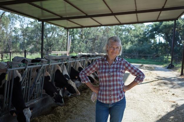 Mulher com idade em uma fazenda rural com vacas.