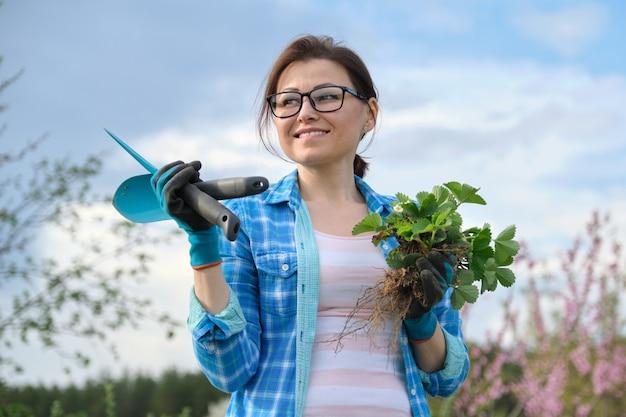 Mulher com luvas e ferramentas de jardim segurando um arbusto de morango