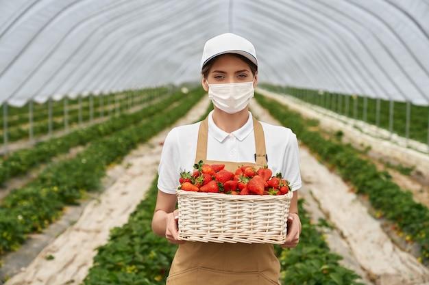 Mulher com máscara em pé na estufa com morangos