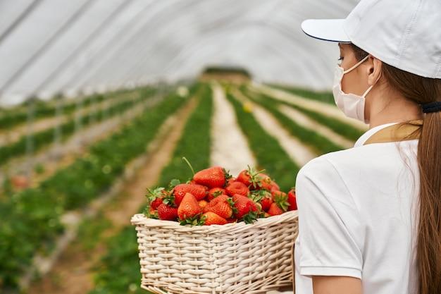 Mulher com máscara médica segurando uma cesta com morangos