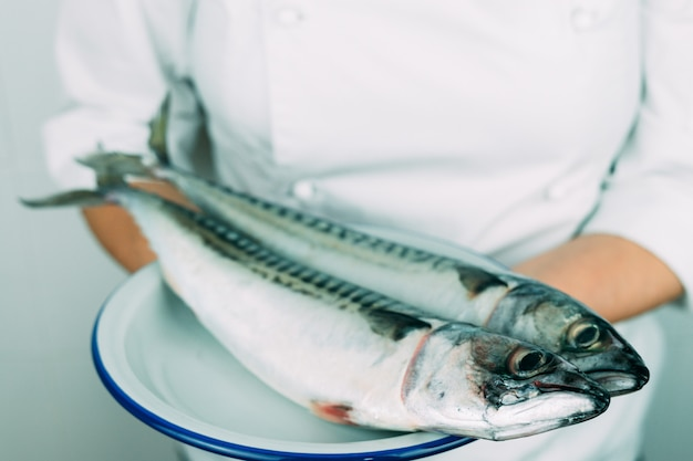 Mulher com roupa de chef, mostrando um prato com peixe fresco. conceito de cozinha. cavala fresca em um prato branco.