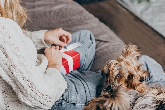 Mulher com suéter branco de inverno se senta em casa no sofá com um cachorro pequeno e abre a caixa vermelha de um presente.