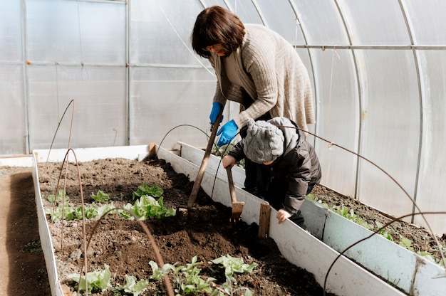 Mulher com um menino pequeno neto planta mudas de vegetais em uma estufa