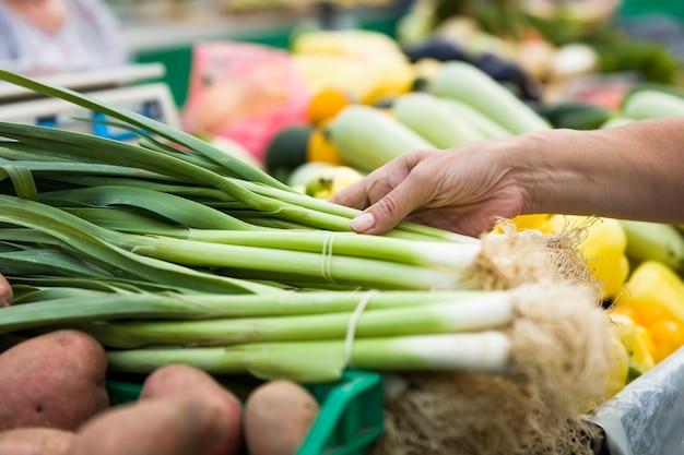 Mulher, comprando, cachos, primavera, cebolas, tenda, mercado
