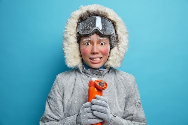 Mulher congelada trinca os dentes e estremece de frio tenta se aquecer com bebida quente da garrafa térmica tem bochechas vermelhas, cílios cobertos de gelo tem repouso ativo durante o inverno gelado
