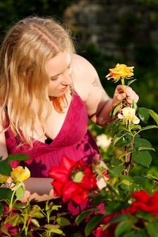 Mulher cortando as rosas no jardim
