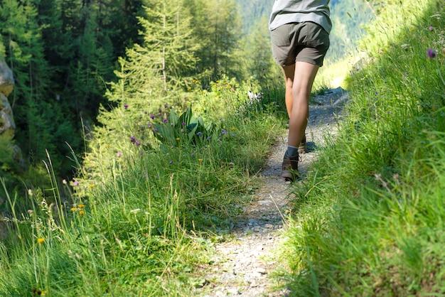 Mulher, costas, hiking, em, um, floresta, caminho