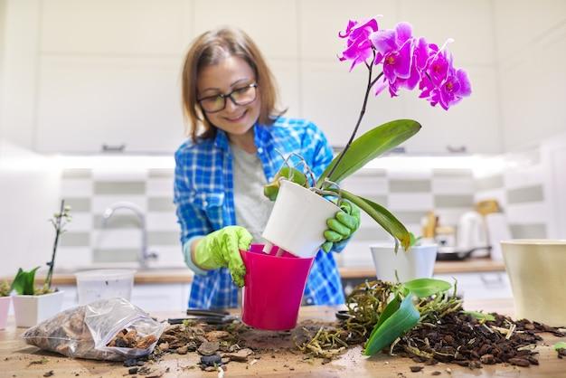 Mulher cuidando da planta orquídea phalaenopsis, cortando raízes, mudando o solo