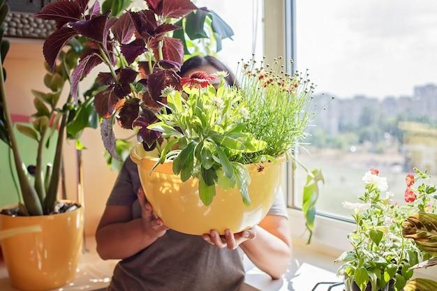 Mulher cuidando das plantas caseiras na janela da varanda, planta pais conceito