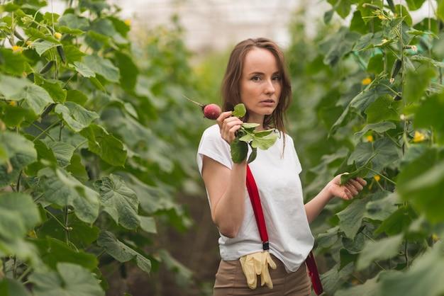 Mulher, cuidando, de, plantas, em, um, estufa Foto gratuita