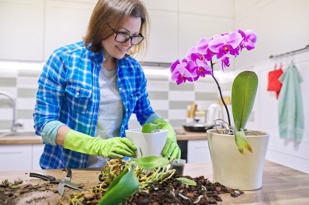 Mulher cuidando de uma planta orquídea phalaenopsis, cortando raízes, mudando o solo, fundo de cozinha