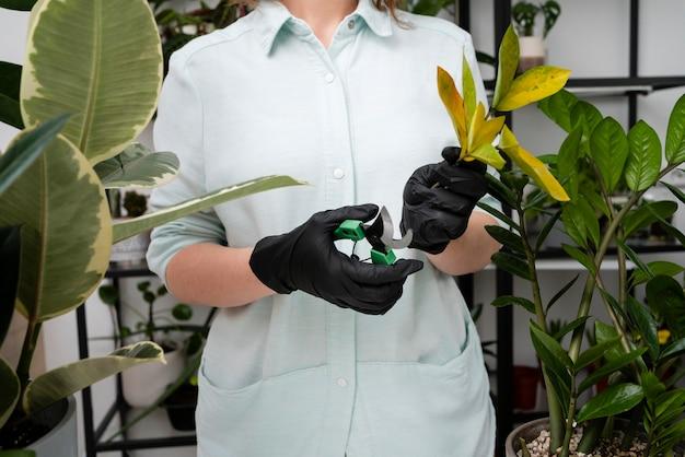 Mulher cultivando plantas de perto