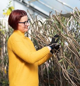 Mulher cultivando plantas Foto gratuita
