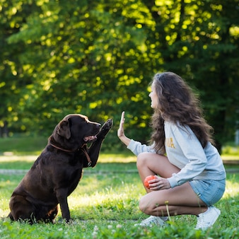 Mulher, dar, alto, cinco, para, dela, cão
