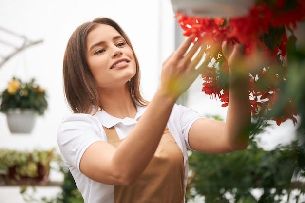 Mulher de avental ajardinando flores em vasos na estufa