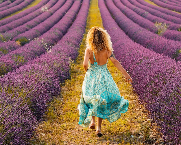 Mulher de cabelo encaracolado com vestido azul e caminhando no campo de lavanda violeta. retrovisor de uma mulher elegante em um vestido sem encosto em meio a um belo campo de lavanda. mulher se divertindo em meio a um campo de flores