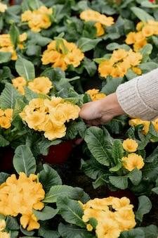 Mulher de close-up com lindas flores amarelas