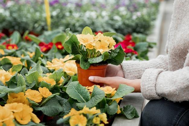 Mulher de close-up com vaso de flores