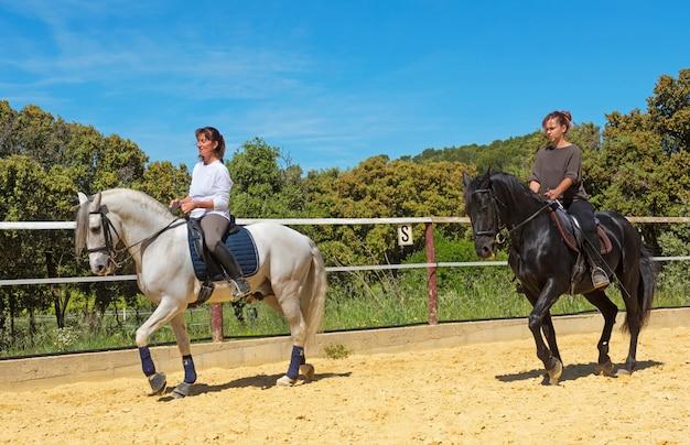 Mulher de equitação no garanhão