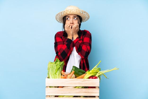 Mulher de fazendeiro com caixa de legumes