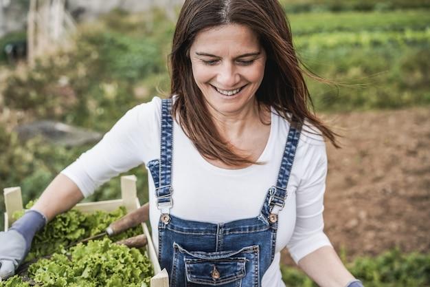 Mulher de fazendeiro maduro segurando uma caixa de madeira com alface orgânica fresca - foco no rosto