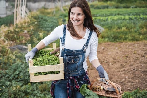 Mulher de fazendeiro maduro segurando uma caixa de madeira com alface orgânica fresca
