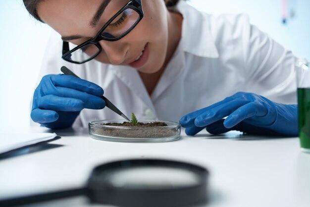 Mulher de jaleco branco examina o profissional de microbiologia de plantas