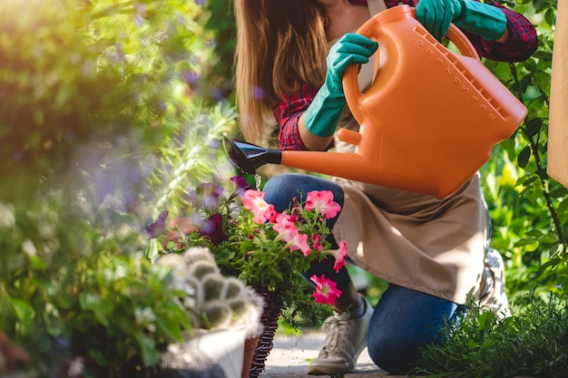 Mulher de jardineiro regando flores no jardim em casa. jardinagem e floricultura, cuidados com flores